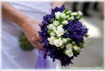 levandulova svatba