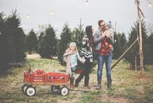 Christmas tree farm shoot / by Stac Leigh