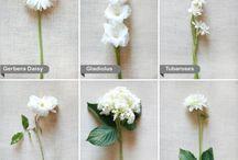 You Loved Me series WEDDINGS / by Evie Harper