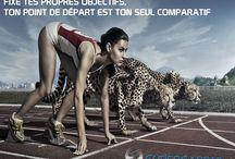 proverbe sportif