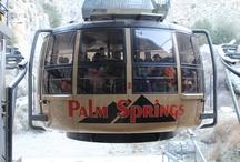 Palm Springs / www.letsplayoc.com