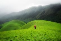 Travel India / Travelling India, have most amazing place for fun, adventures and honeymoon places