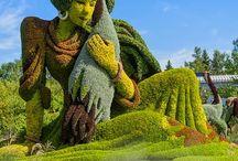 Ландшафтный дизайн, садоводство, цветы