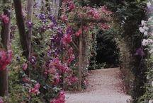 Backyard Paradise / by Jessica Inman