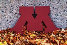 Go Gophers / by Minnesota Gophers