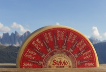 cheese || south tyrol