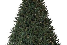 One Tree, Five Ways / Five distinct ways to decorate one tall Christmas Tree this holiday season.