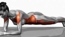 Cuerpo en forma