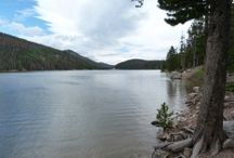 Camping Reviews / Colorado Campsite Camping Reviews and Pictures