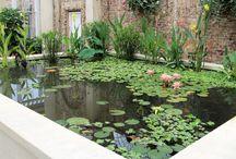 jardin con pequeño estanque