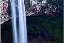 Brasil,brasileiro / by Thayse Cesar
