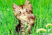 Художник Макото Мураматсу и её кошки / Макото Мураматсу современный японский иллюстратор, специализирующаяся на животных вообще, но особую страсть испытывающая к кошкам. Изображения животных, состоят из смеси юмора и праздничного настроения, по которым вы сразу сможете узнать особенный стиль Мураматсу, как только увидите ее работы. Ее нежные и веселые картинки стали популярны во всем мире, особенно в форме пазлов.