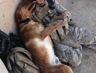 Dogs...Man's Best Friend / If you don't believe that dog is man's best friend, then you haven't seen these pictures! / by Dogs N Pawz