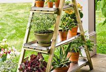 Gardening 'n Decoration