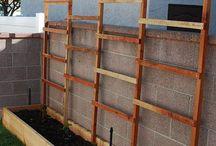 plant groente teen muur