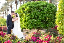 Scottsdale Arizona Weddings / Spend your special day with us here at The Westin Kierland.