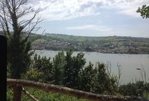 Glorious Devon / Living and working in one of the most beautiful parts of the UK