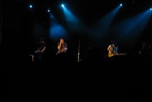FUN.'s concert / my photo of FUN.'s concert in bologna <3