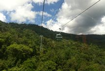 Skyrail Rainforest Cableway experience / Skyrail Rainforest Cableway welcomes you to share your experience with us, The World's Most Beautiful Rainforest Experience here in Tropical North Queensland, Australia.  #skyrail #rainforest #cairns / by Skyrail Rainforest Cableway