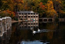 Montreat / by Lisa Galloway