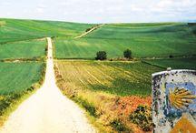 Camino de Santiago / The Way of St. James