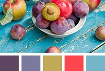 Colour Intelligence / Inspirational Colour combinations