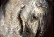 Equestrian Art / Beautiful paintings of horses