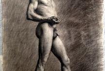 Anatomy / by Sebastian Tanobas