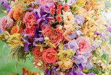 fiori&co.
