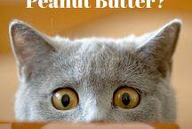Sun-Pat's World of Peanut Butter. / Humorous pics from the world of Peanut Butter