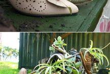 Sapatos Viejos