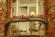 Juliette Balcony Gardens