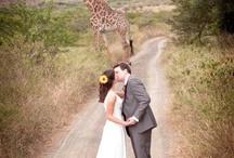 African Bush Wedding