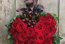 Be My Valentine.... / The celebration of love...Amore'... / by JoDina .