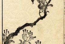 oriental art: tree