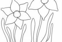kvety omalovanky
