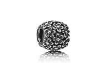 Pandora Beads I want  / These are the beads on my wish list for my Pandora bracelet  / by Amber Duncan