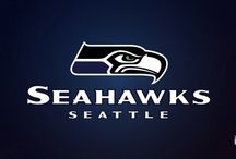 Seattle Seahawks / Seattle Seahawks Wallpaper, American football, american football league, Amerikan Futbol, football, futbol, Ligi, National Football Conference, National Football League, NFC, nfl, NFL Team, nfl teams, team, Washington, Western Division