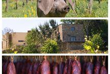 ENOTURISMO | WINE TOURISM