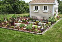 Happy Gardening / by Sara Brown