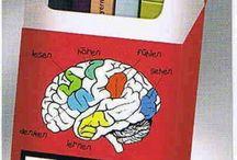 Gedanken und Bücher