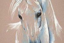 Beautiful Horses / Horses