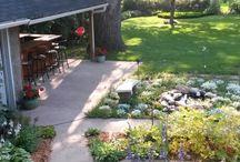 backyard / by LeAnn Monaghan