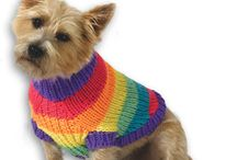 Knitting dog clothes