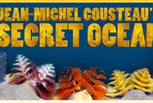 Jean Michel Cousteau's Secret Ocean Film / by Reuben H. Fleet Science Center
