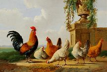 Chickens / by Val Davis