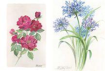 자수도움 꽃 그림