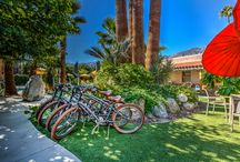 Palm Springs Bed and Breakfast Accommodations / Colt's Lodge is a beautiful California Cottage style boutique hotel in Palm Springs, CA. The lodge offers guests a continental breakfast, a heated swimming pool open 24-7, and complimentary bikes!