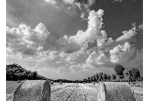 Country Side / by Nikki McQuaide