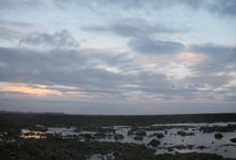 Terre & ciels / Vacances 2013 à l'île de Ré